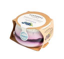 Yogur Ecológico de Arándanos
